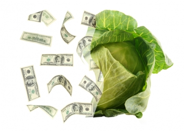 Funding Entrepreneurial Growth - Kabbage is Financing the Future